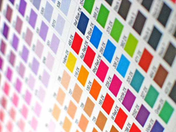 logo gestion y tratamiento del color
